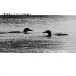 two loons a003