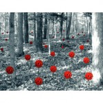 red in forest g025