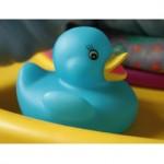 blue duck g040