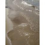 cottage waves g126